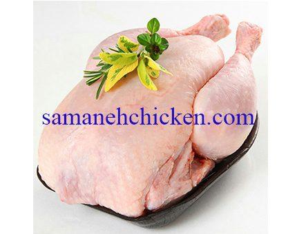 گوشت بوقلمون گوشتی لذیذ و پرخاصیت مناسب مهمانی های خاص شما